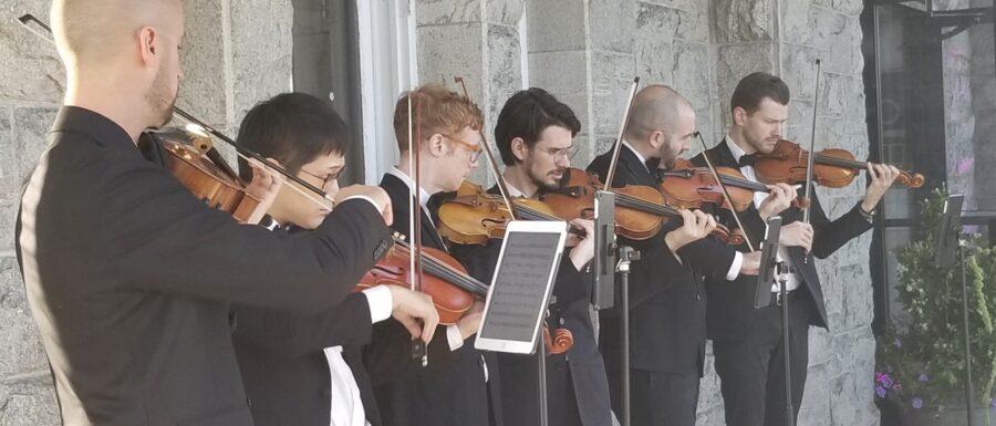 String Violin Orchestra